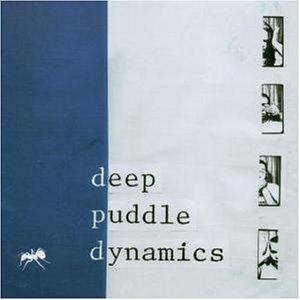 Deep-Puddle-Dynamics-788023