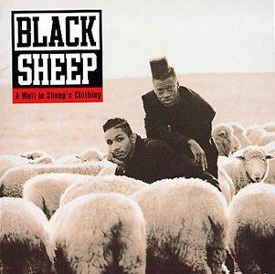Black-Sheep-778128